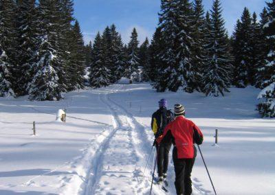Ski de fond - Activités de l'Herbe Tendre