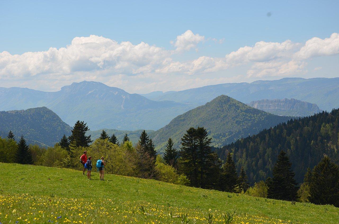 Bienvenue sur l'Herbe Tendre, gîte et auberge dans le val des Entremonts, entre le col du Cucheron et du Granier, au sein du massif de la Chartreuse.