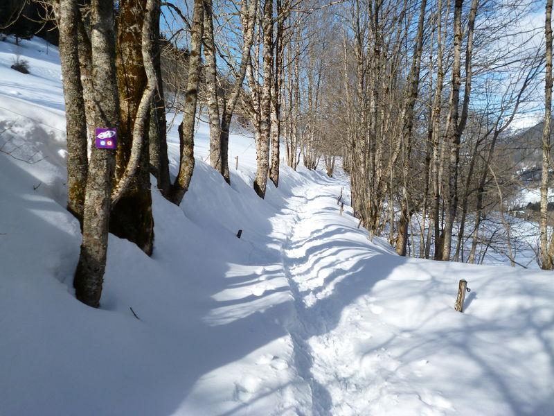 Activités à faire en hiver